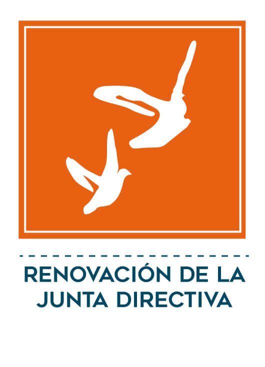 renovacion-6